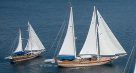 Choice of charter yachts